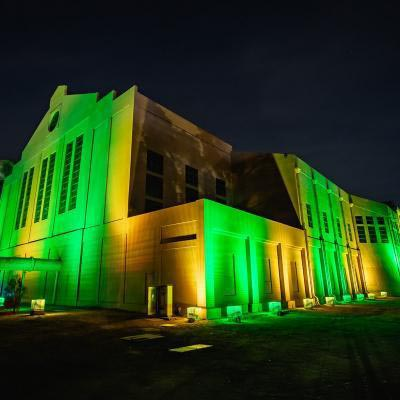 Power Station Lights Green And Gold